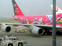 Decorated Plane